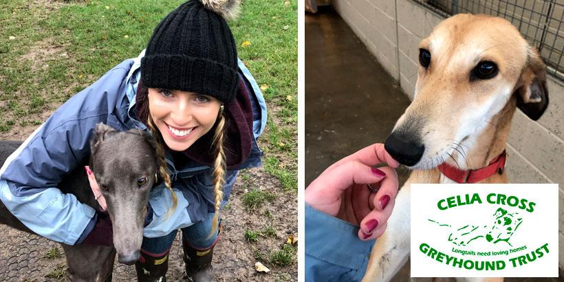 Hannah Burchell – Celia Cross Greyhound Trust – Jellybean's 12 Days of Giving