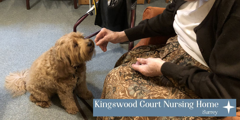 Food and Drink Marketing - Whisky – Kingswood Court Care Home – Jellybean's 12 Days of Giving